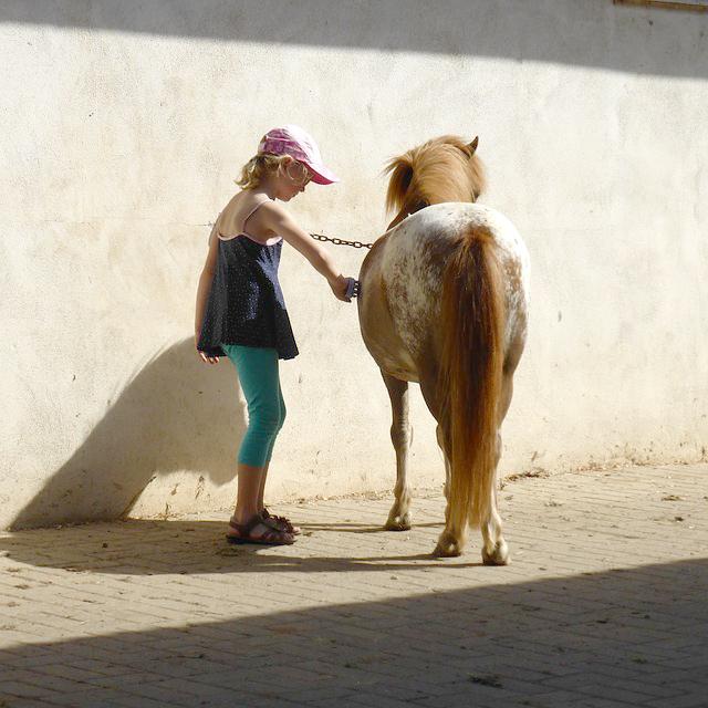 Ponymeisjes brengen geluk