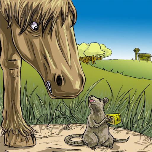 Ratten op stal: last of leuk?